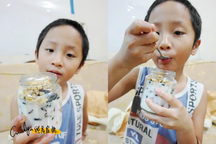 林鳳營鮮奶優格