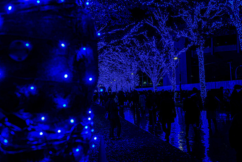 aonodokutsu Grotta Azzurra「青の洞窟 SHIBUYA」で「#青の洞窟」もらってきた