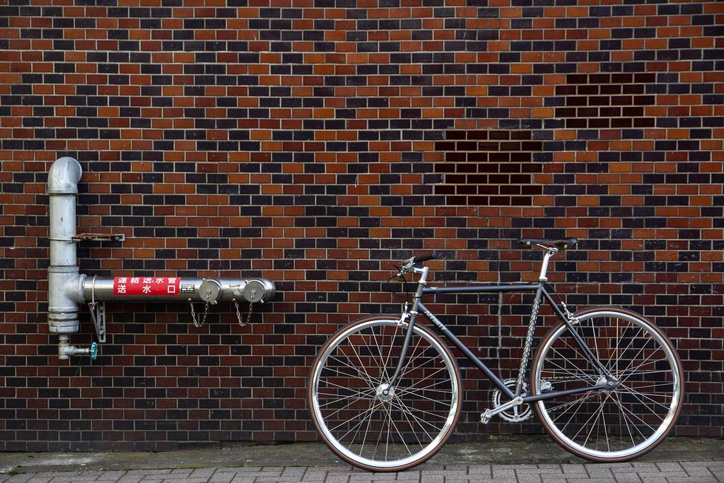 *AFFINITY CYCLES* metropolitan (S)