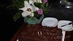 Lucia 80 191205 027 Pavão Verde bolo