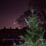 Christmas tree at Winckley Square in Preston