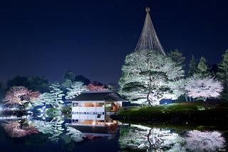 国営昭和記念公園 Showa Memorial Park