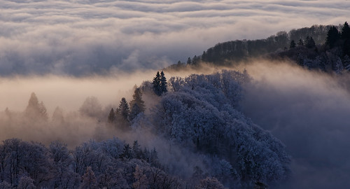 uetliberg mountain hill morning sunrise bluehour dawn fog cloud cloudscape frost