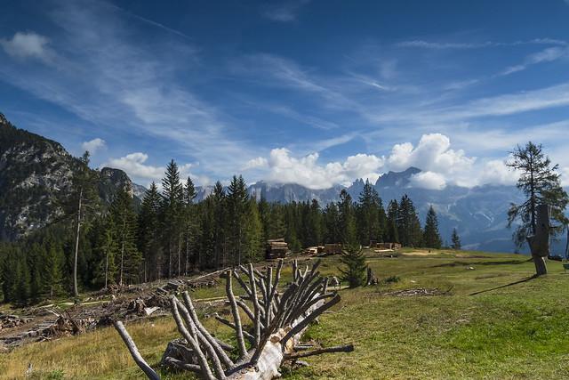 Alto Adige Italia Nature Outdoor sunny day 14092019 204''#