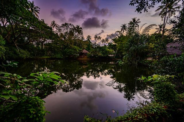 India - Kerala - Mariarikulam - 2500