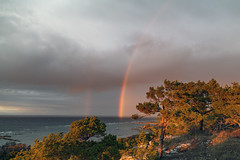 Rainbows over the sea