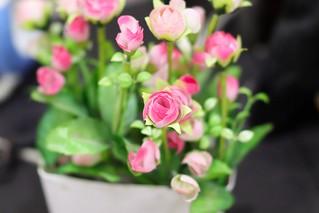 Artificial Plastic Flowers