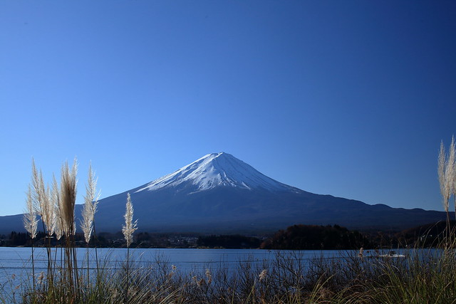 On the banks of Lake Kawaguchi