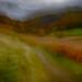 "<p><a href=""https://www.flickr.com/people/jjbphotography/"">John J Buckley</a> posted a photo:</p>  <p><a href=""https://www.flickr.com/photos/jjbphotography/49187460887/"" title=""Deepdale Autumn #2""><img src=""https://live.staticflickr.com/65535/49187460887_3842e95fe6_m.jpg"" width=""240"" height=""137"" alt=""Deepdale Autumn #2"" /></a></p>"