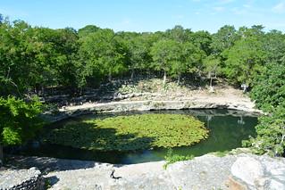 Cenote Xlacah, se ubica en el interior de la Z.A. de Dizibilchaltun
