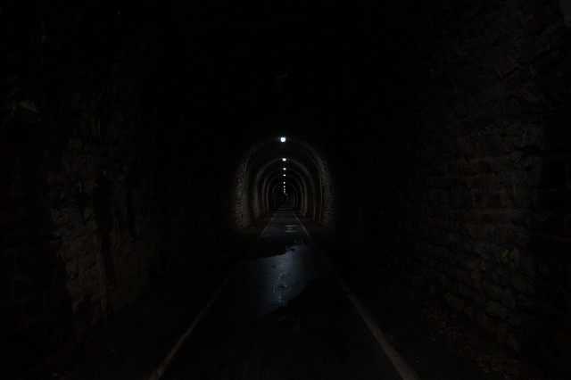 The Tunnel of Horror
