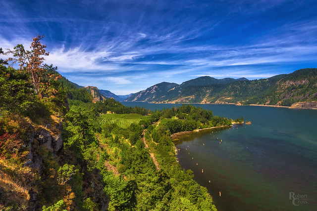 Columbia Gorge Color