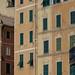 "<p><a href=""https://www.flickr.com/people/dmh64/"">mona_dee</a> posted a photo:</p>  <p><a href=""https://www.flickr.com/photos/dmh64/49188333466/"" title=""Liguria""><img src=""https://live.staticflickr.com/65535/49188333466_c1b526971f_m.jpg"" width=""240"" height=""160"" alt=""Liguria"" /></a></p>"