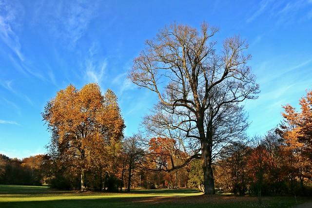 Greiz kurfüstlicher Schlosspark