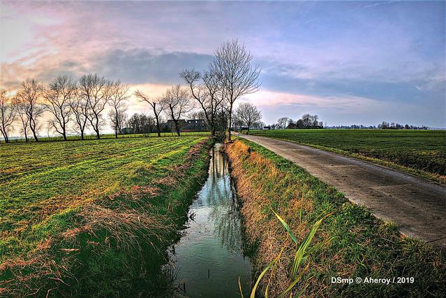 Groninger Landschap,Groningen ,the Netherlands,Europe