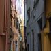 "<p><a href=""https://www.flickr.com/people/dmh64/"">mona_dee</a> posted a photo:</p>  <p><a href=""https://www.flickr.com/photos/dmh64/49188557937/"" title=""Liguria""><img src=""https://live.staticflickr.com/65535/49188557937_544358e0c0_m.jpg"" width=""160"" height=""240"" alt=""Liguria"" /></a></p>"