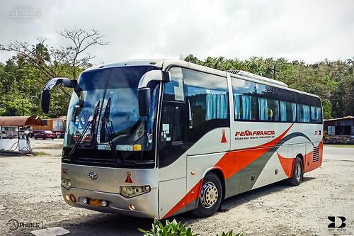 peñafrancia tours travel transport inc 52 higer v91 klq6119qe3 klq6119 klq6112 lklr1hsg l53sa yuchai yc6l28030