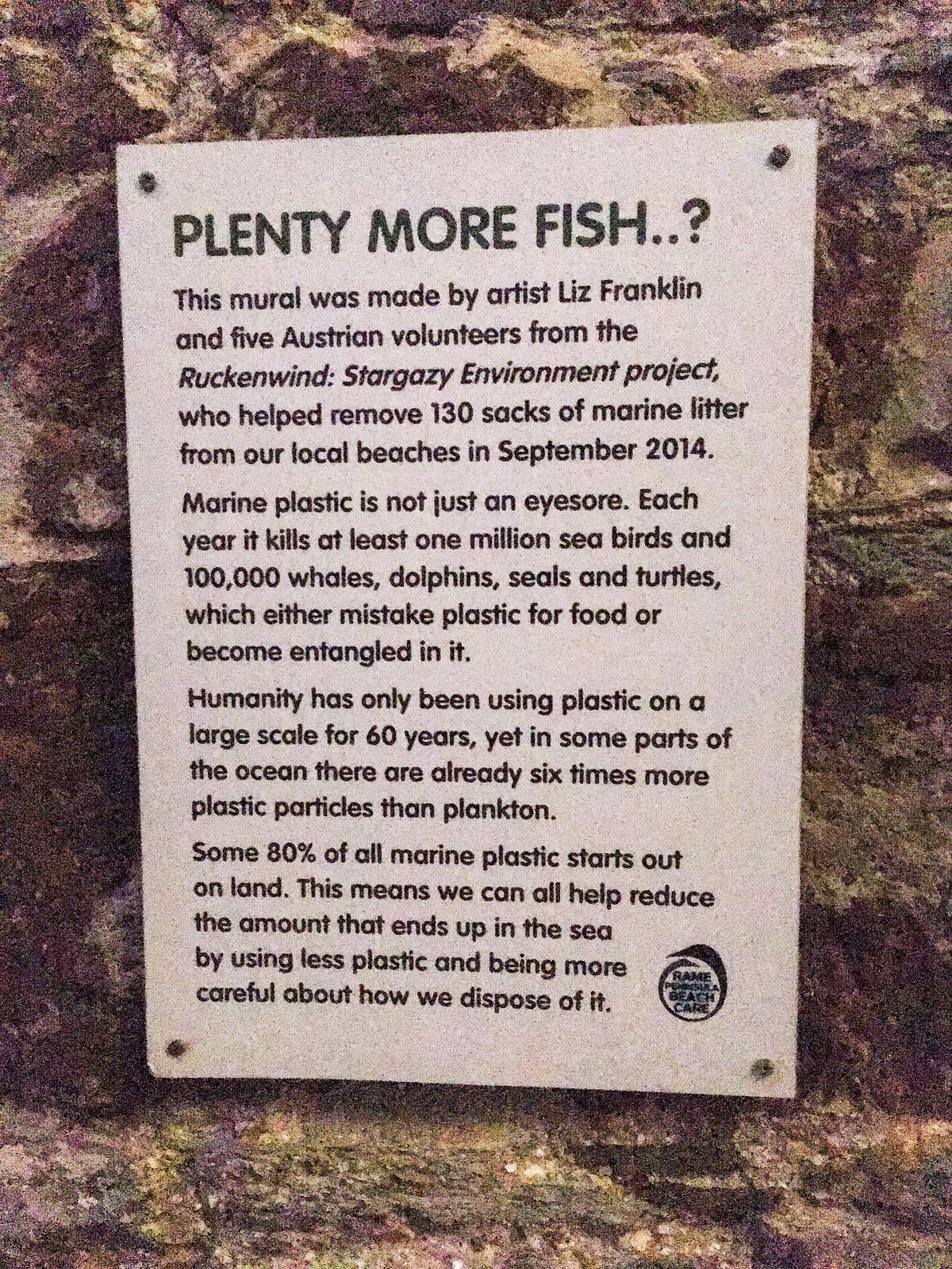 Plenty more fish