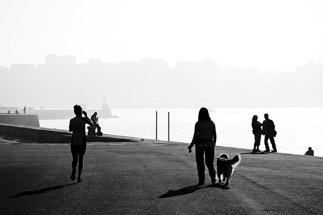 Walking in the morning mist in Douro river mouth