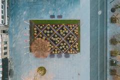 Christmas Trees | Kaunas aerial