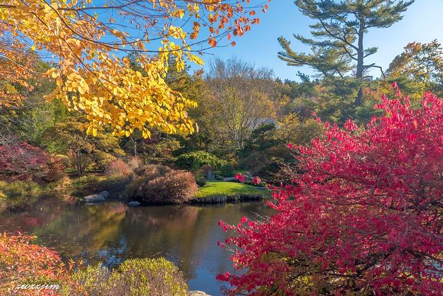 ME Acadia Autumn 01