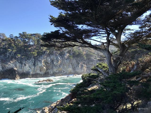 Big Sur Point Lobos