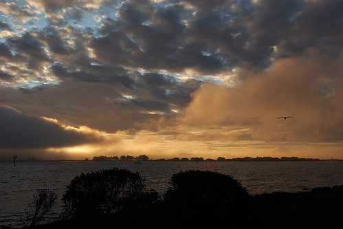 nrd bodegabay sunrise bay ca usa bodegabays1030542