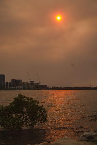 australia digital newsouthwales nsw pentax parramattariver river sunset