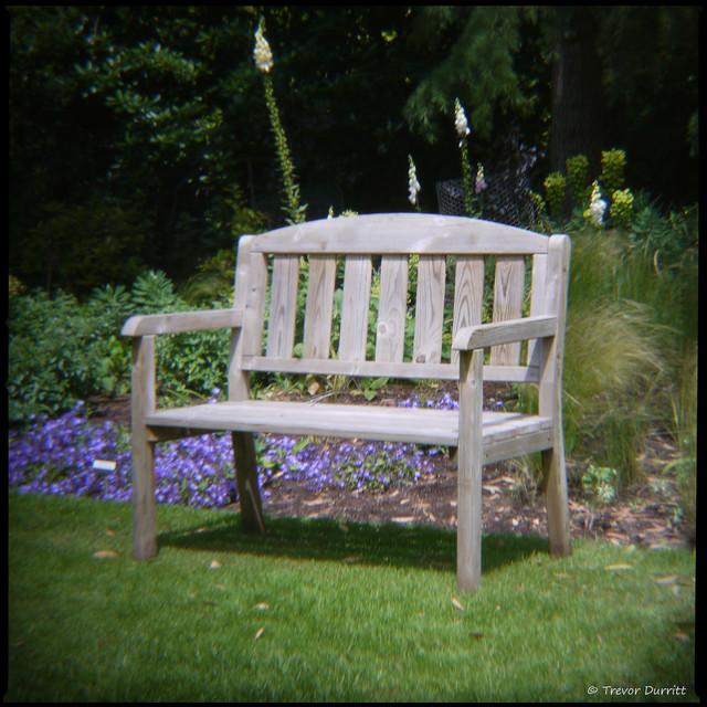 Bench, Bressingham Gardens P1010162