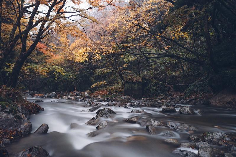 花貫溪谷|關東