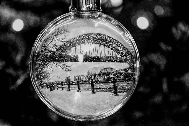 My favourite Christmas decoration, in black and white   IMG_0771