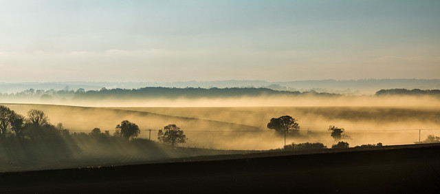 Sunlight on a Misty Morning