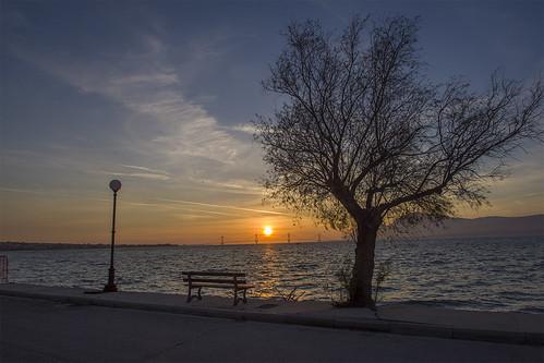 sun sunset sea sky tree bench bridge pentaxk70 tamron