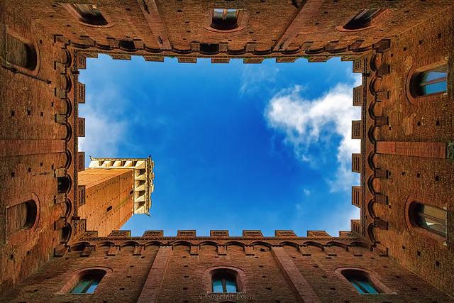 Nel Cortile del Podestà alza gli occhi al cielo. - In the Cortile del Podestà he looks up to the sky.