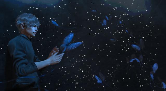 Butterfly Dreamin'