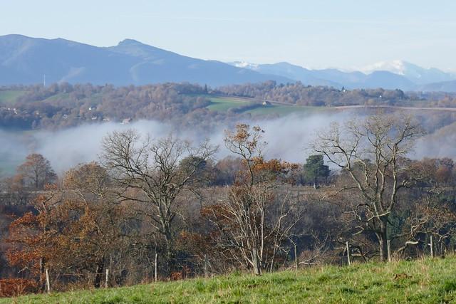 Brumes de décembre, Bosdarros, Béarn, Pyrénées Atlantiques, Nouvelle-Aquitaine, France.