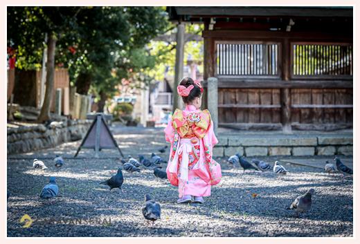 七五三 神社の境内で鳩を追いかける女の子の後ろ姿