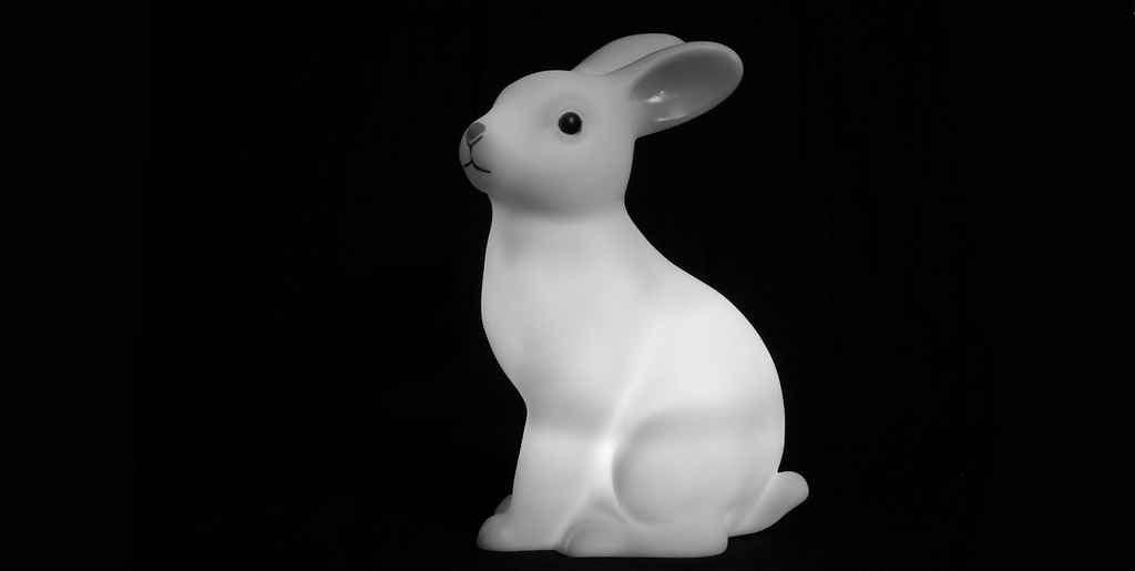 Un lapin imprimé en 3D contient des instructions ADN