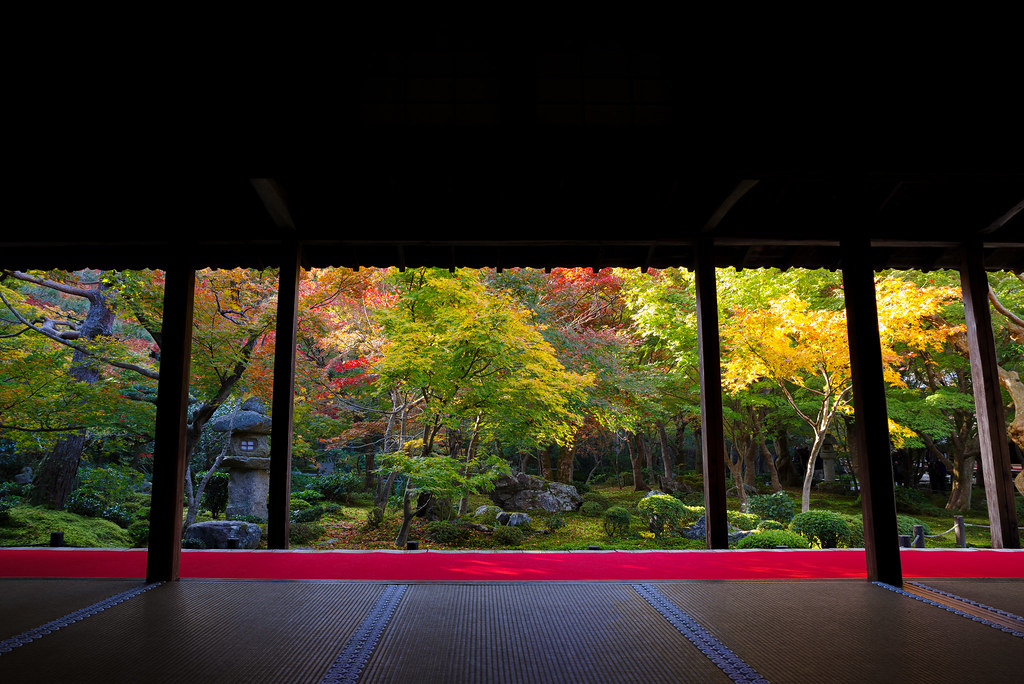 20191121_kyoto (12)