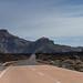 Tenerife15
