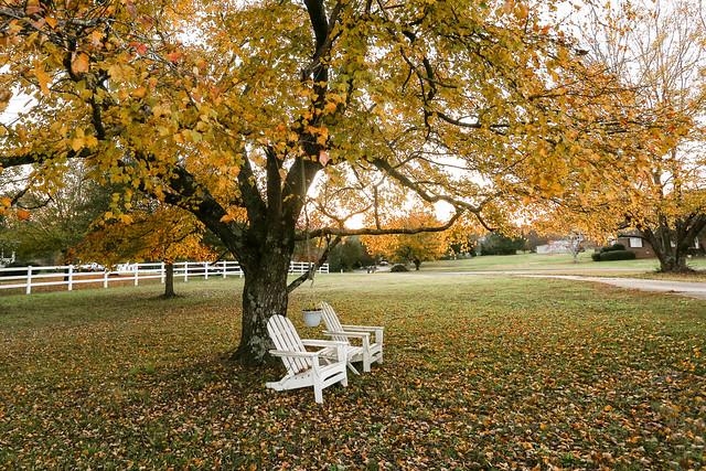 Autumn - Anderson S.C.