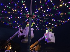 Hawaiian Electric Revives Tree Lighting Tradition at Puu o Kaimuki Mini Park — Dec. 5, 2019: Linemen inspected every lightbulb on the tree.