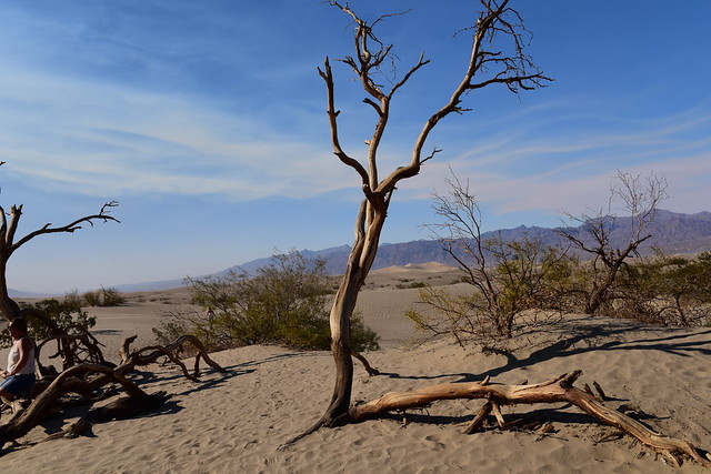 Death Valley, California, US_August_2017_1599