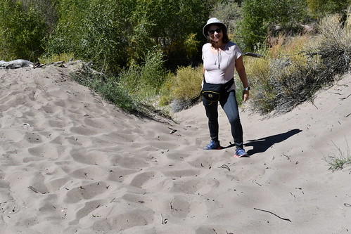 Sandy hiking up sand hill. From History Comes Alive at the Great Sand Dunes National Park