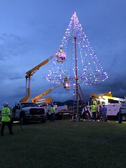 Hawaiian Electric Revives Tree Lighting Tradition at Puu o Kaimuki Mini Park — Dec. 5, 2019: Volunteers gave it a final look before they wrapped up their work.
