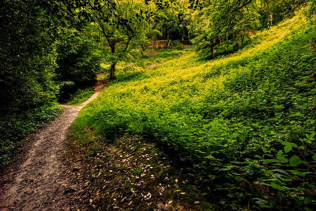 A walkt through Happy Valley