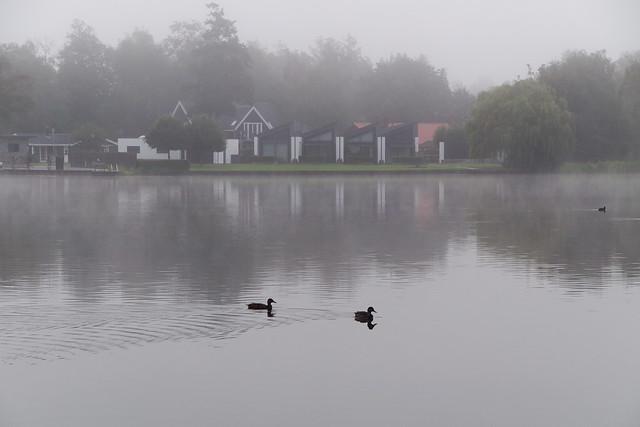Patrol in the fog