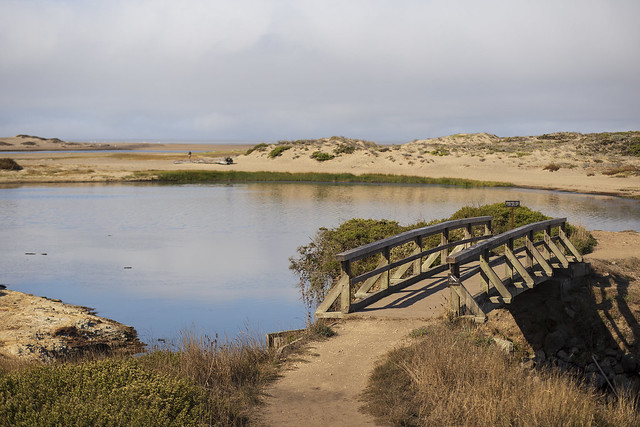 Bridge over Abbotts Lagoon