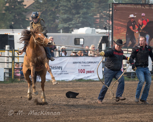 CPRA 36th Annual Rodeo