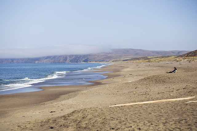 A Man Watches the Point Reyes Seashore